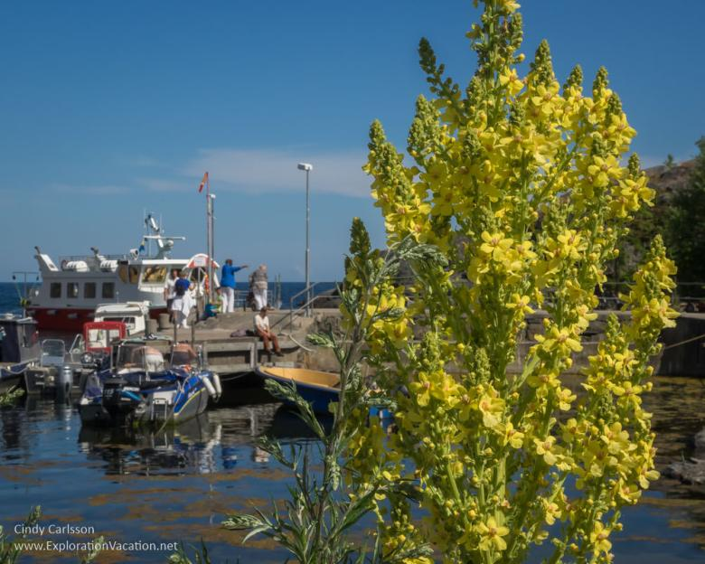 ferry in harbor on Landsort Öja Island Sweden - www.ExplorationVacation.net