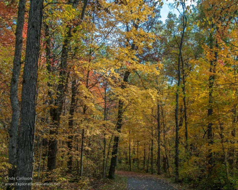 Wild River State park in fall - www.ExplorationVacation.net