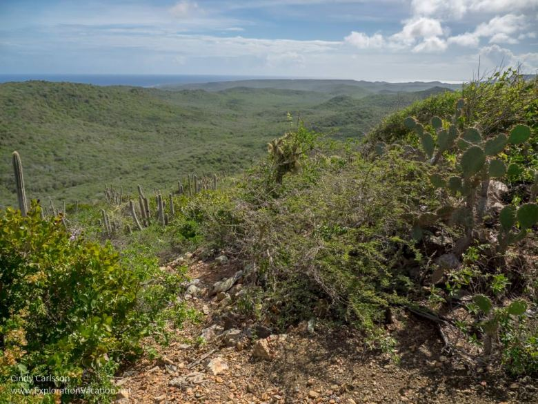 Scenic views along the Mountain Route in Christoffel National Park Curacao - ExplorationVacation.net