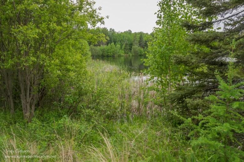 Ludlow Pond in Minnesota's Big Bog park - ExplorationVacation.net