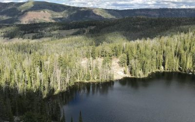 See the Montana Mountains from a Helicopter