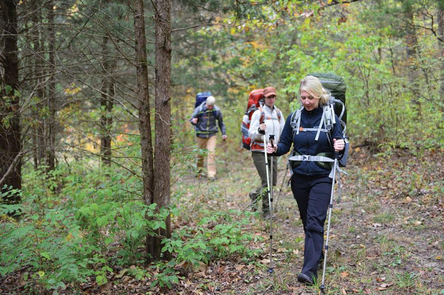 ALPS Mountaineering Excursion Trekking Pole
