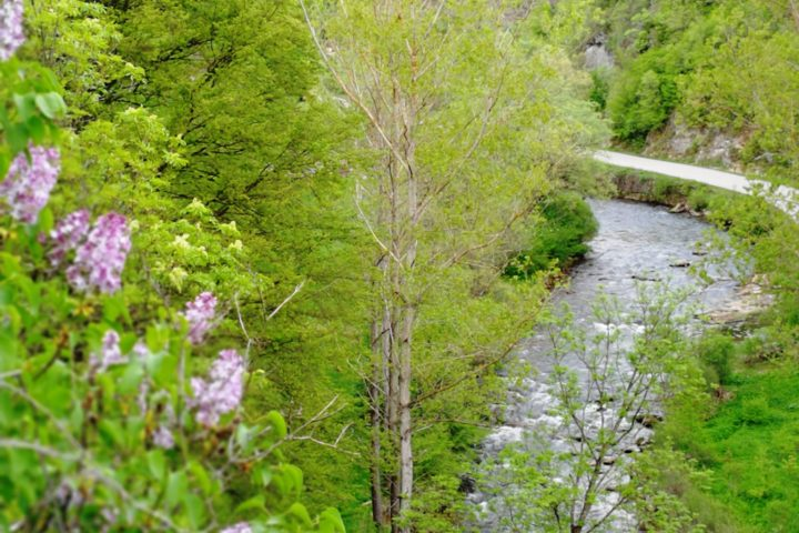 Jelovica river, Stara planina