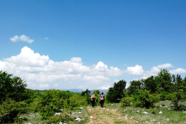 Stara planina hiking