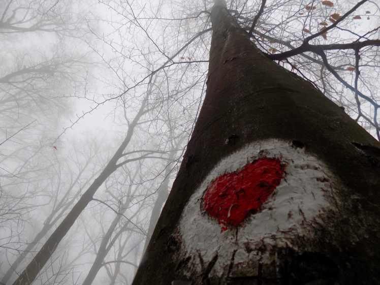 Fruška gora heart hiking mark