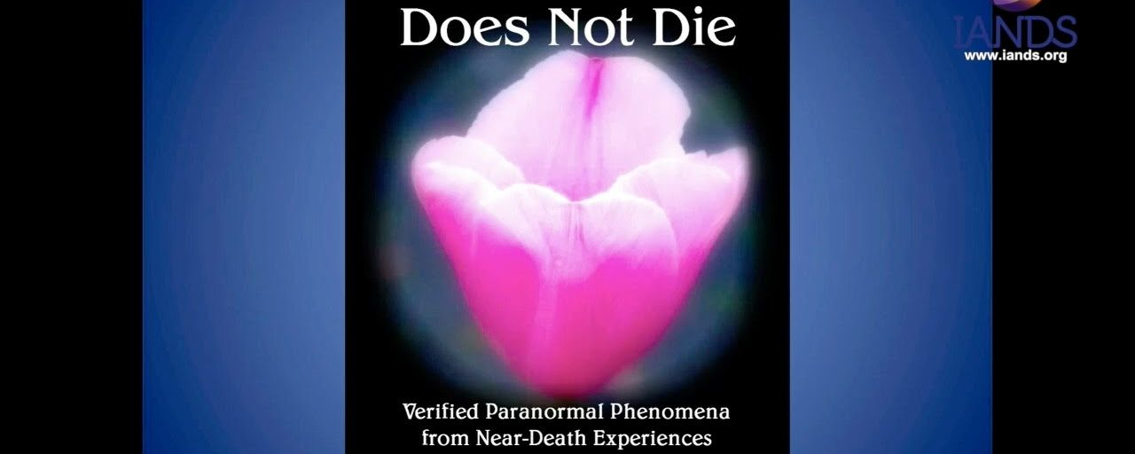 The Self Does Not Die: 104 Cases of Verified Paranormal Phenomena from Near-Death Experiences