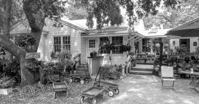 Clay Gardens, Gifts & Blessings | Seagrove Beach
