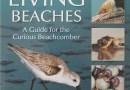 Florida's Living Beaches – A Guide for the Curious Beachcomber