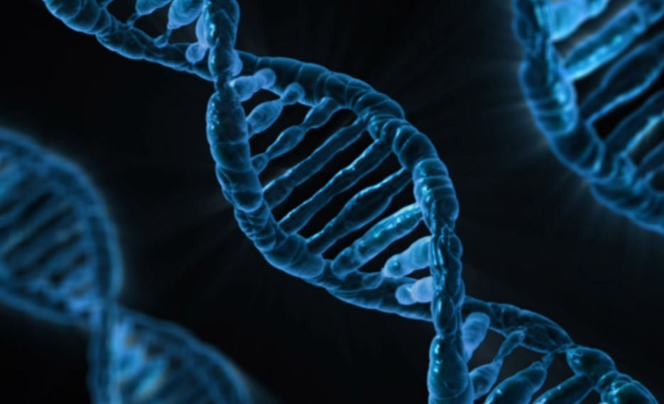 DNA Tests Could Become Lifesaver For Cancer Patients