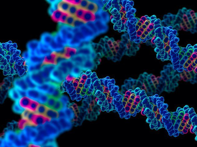 genes130723113749-large-e1375494861262