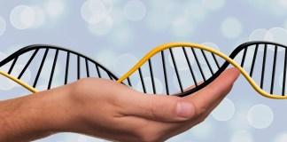 Biotechnology Breakthroughs 2018