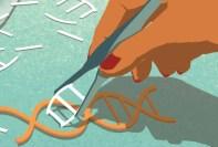 Gene Editing_CRISPR
