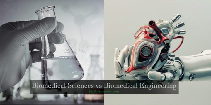 Biomedical Sciences vs Biomedical Engineering