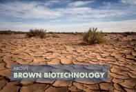 Brown-Biotechnology