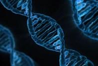 gene editing startup