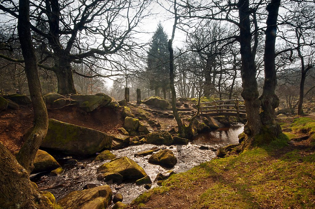 Autumn Walks in the Peak District & Derbyshire