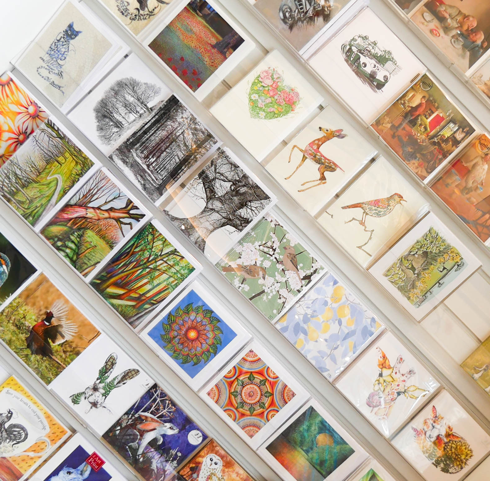Isla Fine Art Cards Gifts Buxton Fill Your Home With Beautiful