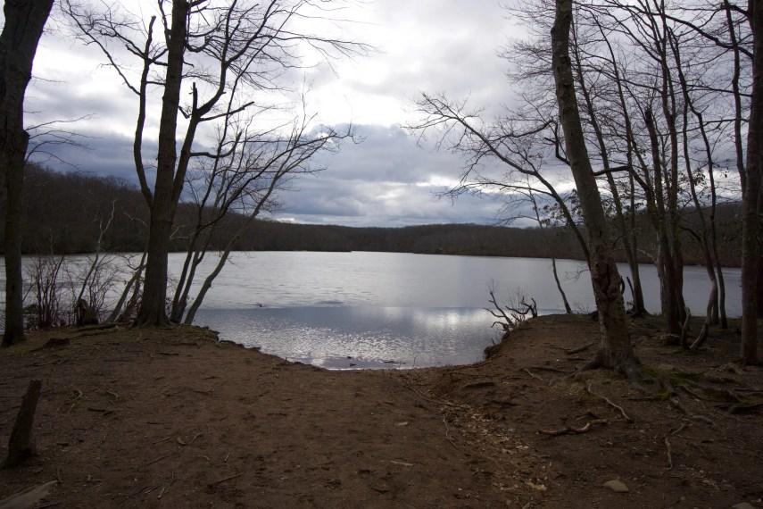 Millers Pond Area