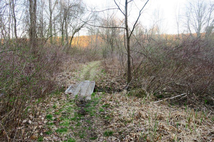Trail to Lynch Landing