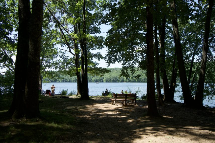 George Waldo State Park Swimming