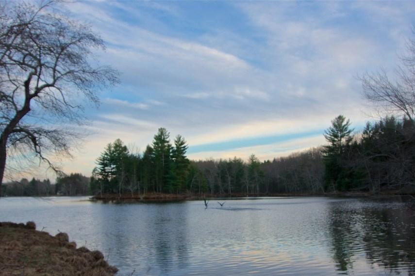 Allanach Wofl Lake Marie Spring