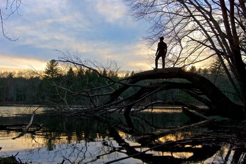 Allanach Wolf Lake Marie at Sunset