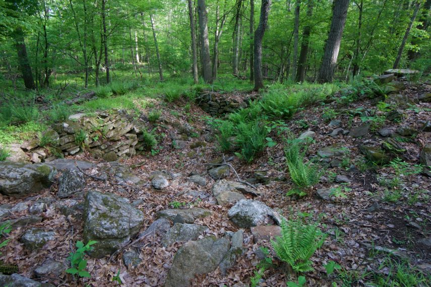 Foundation at Nedwied