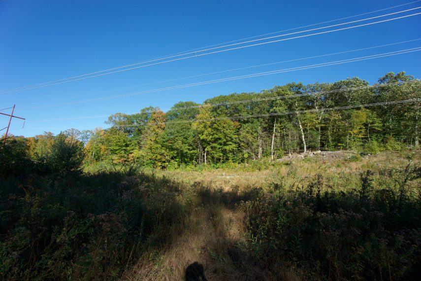 Commons Hill Powerline Crossing