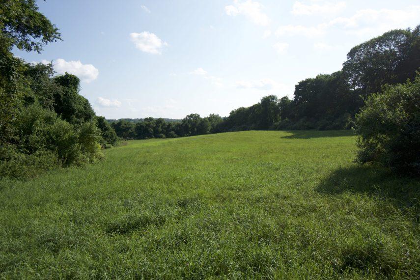 Milo Appley Field
