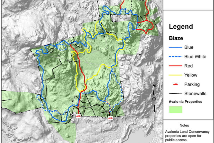 Tritown Forest Trail Map