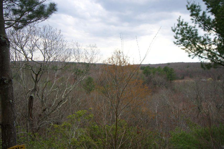 Kendall Palmer Ridges Overlook