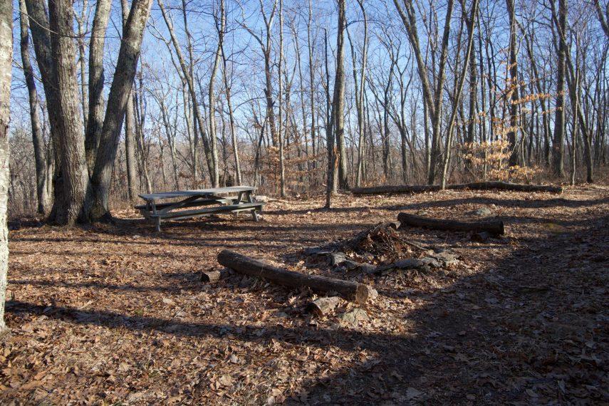 Kinne Preserve Camp