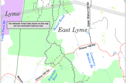 Nehantic State Forest East Lyme