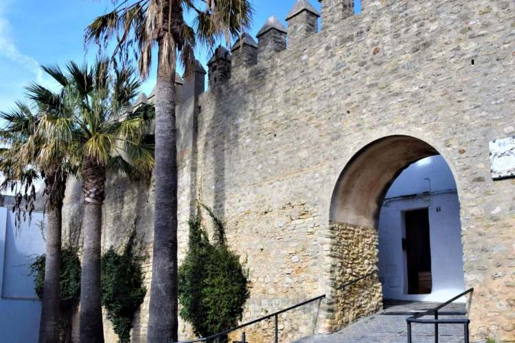Vejer castle wall with palm trees
