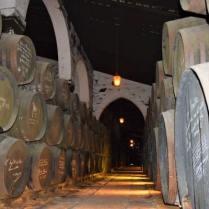 vino jerez sherry Jerez de la frontera solera de bodegas fundador VORS very old rare sherry famous people signature black mold humidity village Cadiz Explore la Tierra