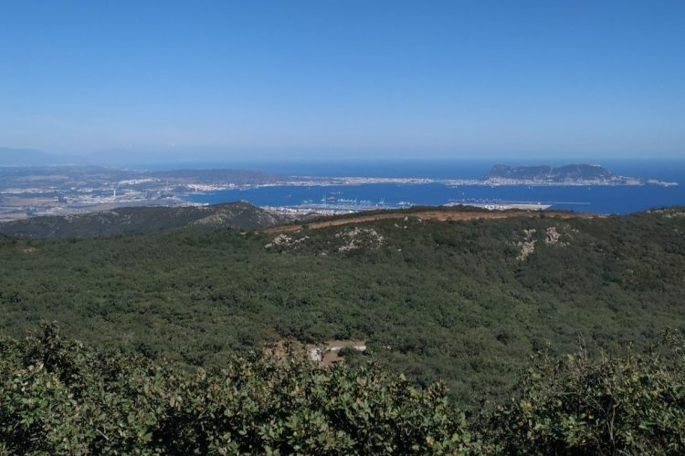 Views of Gibraltar from los alcornocales natural park