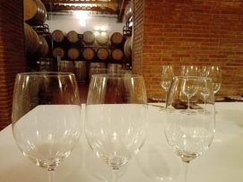 wine tasting tour in Catalonia tour companies in Spain