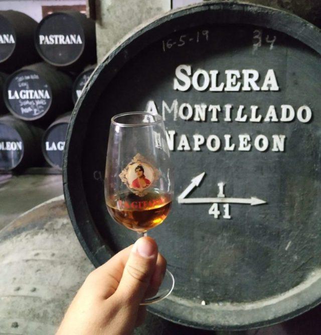 Best amontillado sherry wine