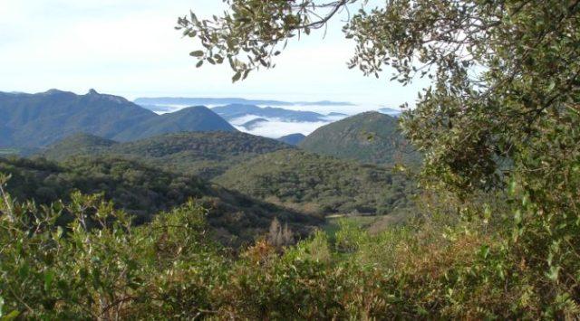 view-torreon mountain Sierra Grazalema natural park from Wildside holidays