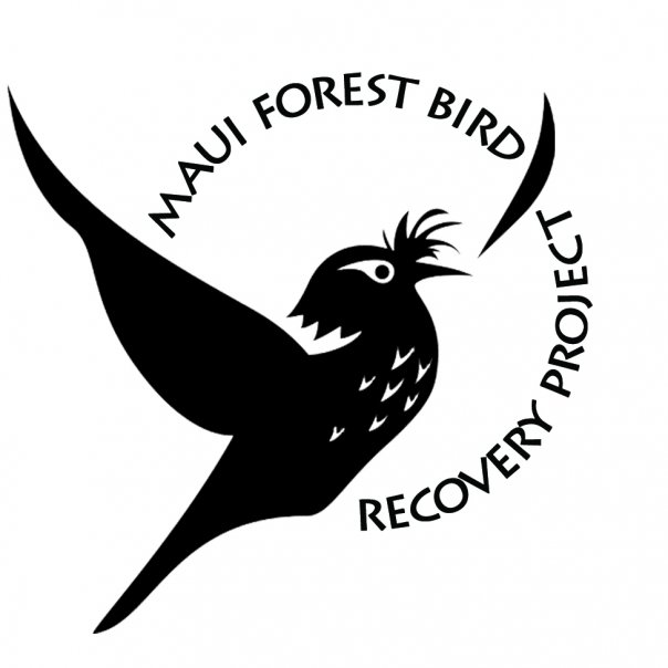 Image result for maui forest bird recovery project