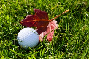 Best Golf Courses in the Twin Cities for Fall Golf