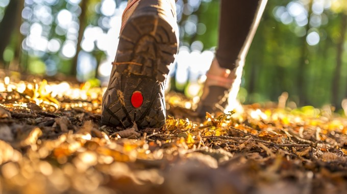 Gorgeous Fall Hikes To Enjoy After Your Next Round