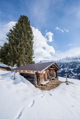 Hütte mit Aussicht
