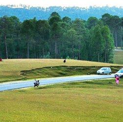 Tourist places around Ranikhet
