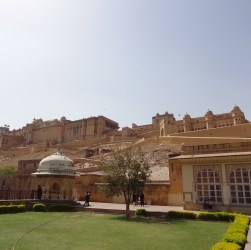 Top attraction Amer Fort