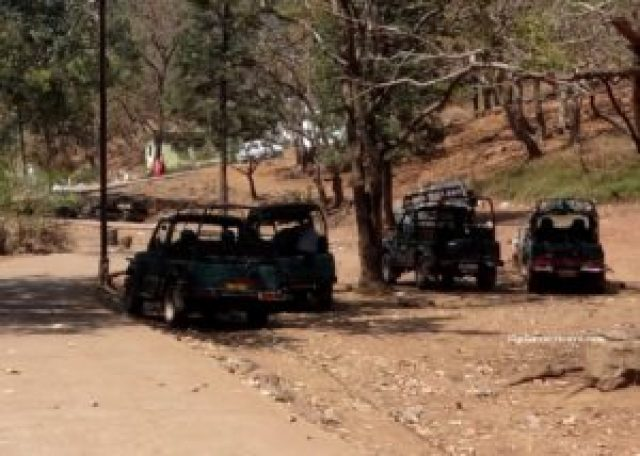 open jeep in Pachmarhi
