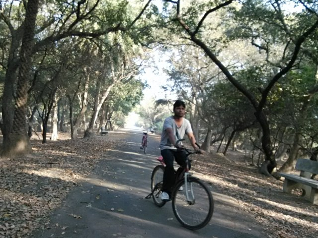 cycling in Keoladeo National Park