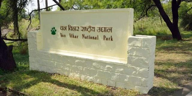 Van vihar national park bhopal