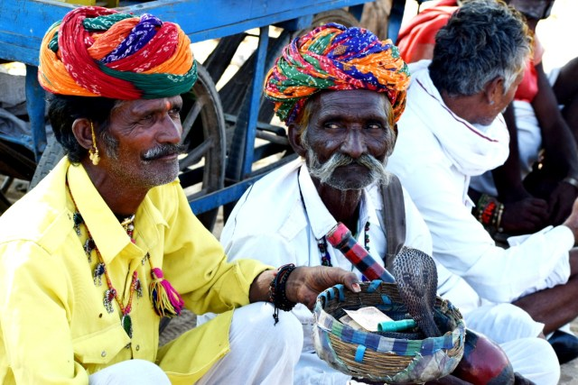 snake charmer at Pushkar fair