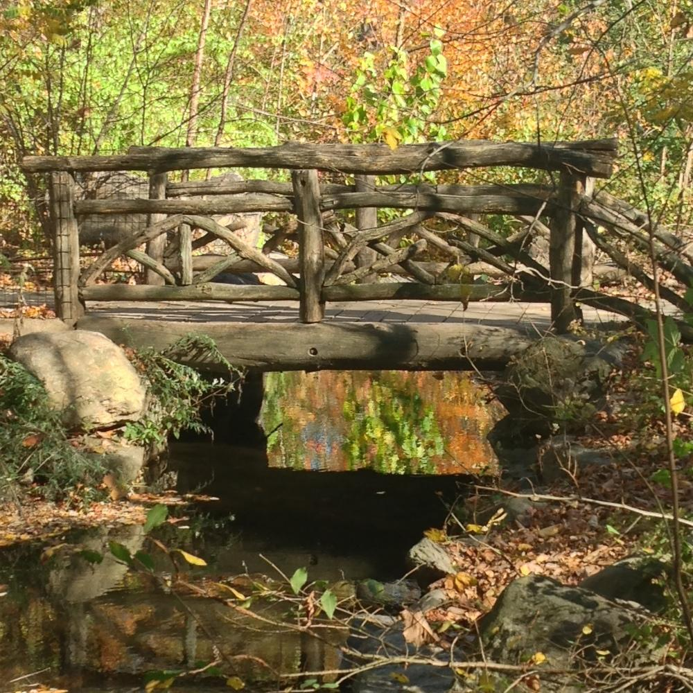 The Rustic Ravine Bridge over the Loch